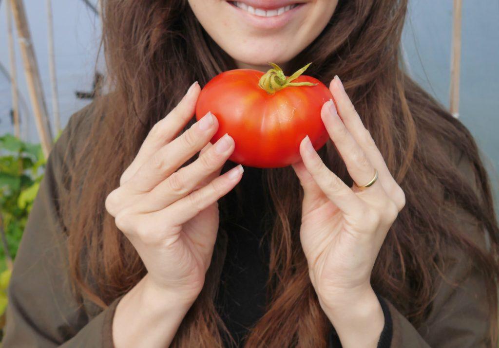 early-autumn-garden-diary-tomatoes