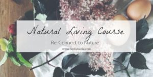 natural living course reconnect to nature