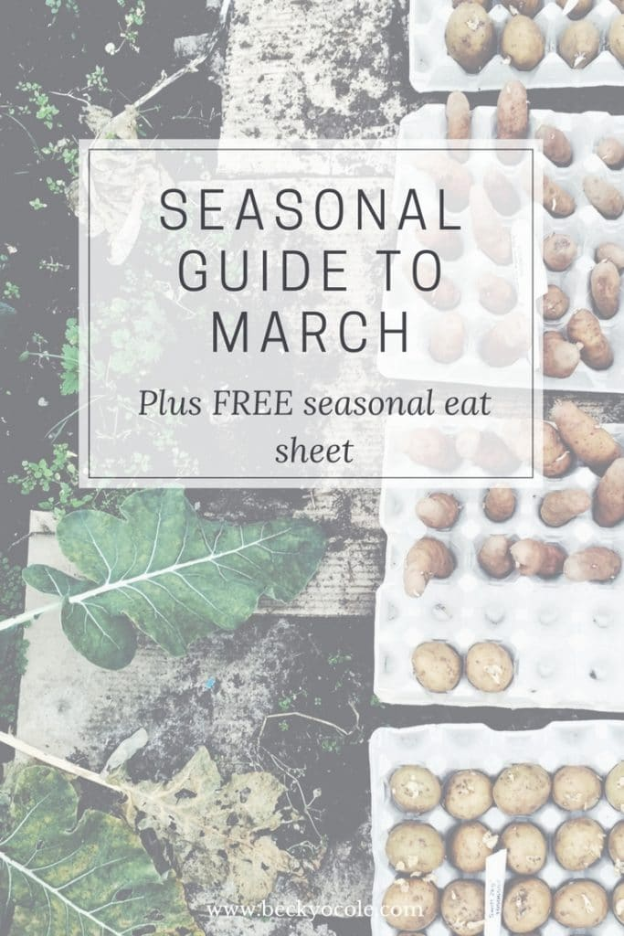 slow living seasonal guide march spring becky o cole