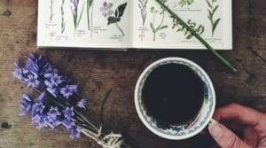 seasonal guide to spring april slow living
