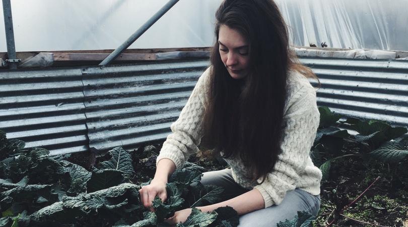 Planting Trees & Herbs-Slow Living Vlog