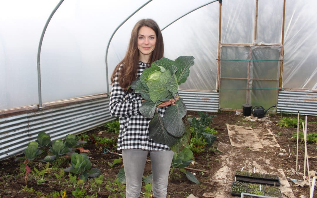 I'm on Radio 2! Three Easy to Grow Vegetables