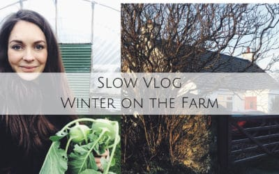 Winter's Day on the Farm-Slow Living Vlog