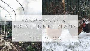ditl farmhouse renovations polytunnel winter homestead sahm