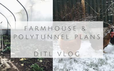 Slow Living Vlog-Farm Cottage Renovations, Baby Goats and Winter Polytunnel