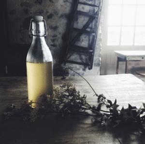 wild cookery meadowsweet cordial recipe