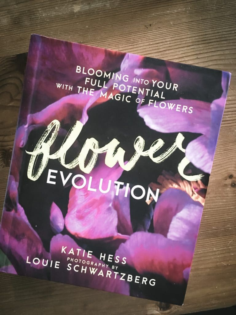 Review Flower Evolution Katie Hess