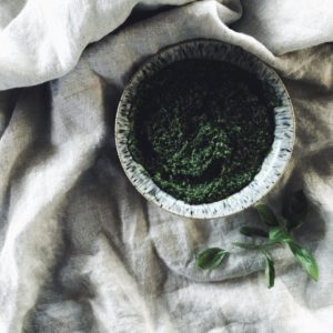 Wild-Garlic-and-Three-Cornered-Leek-Spring-Pesto-Recipe