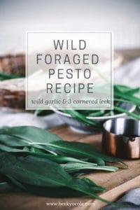 wild garlic pesto foraged pesto recipes