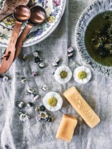 daisy bruise balm recipe daisy natural uses