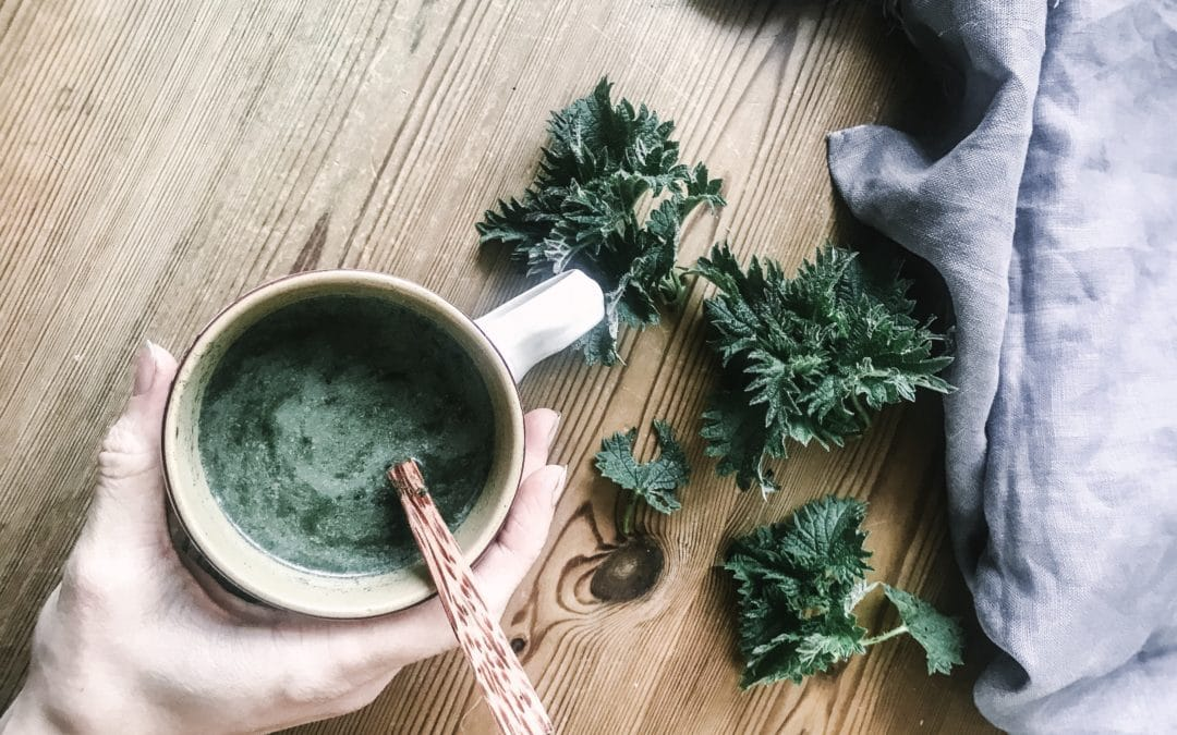 Nettle Latte Recipe