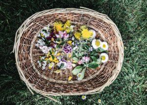 what to garden in summer nature summer seasonal food