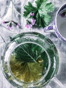 pelargonium edible recipe tea 2