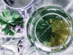 pelargonium edible recipe tea