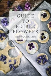 ultimate guide edible flowers