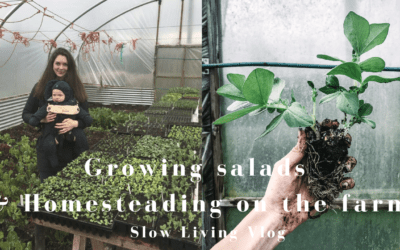 April on the Farm-Growing Salads in the Polytunnel VLOG
