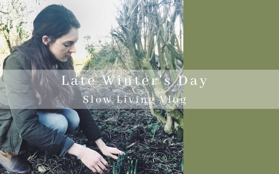 late winters day slow living vlog