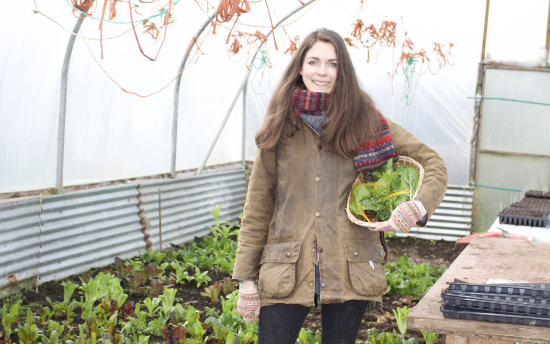 march polytunnel tour