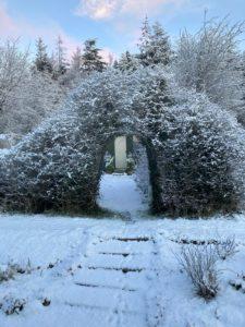 jobs for the winter garden
