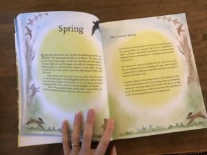 childrens forest book review6