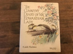country diary of an edwardian lady book review