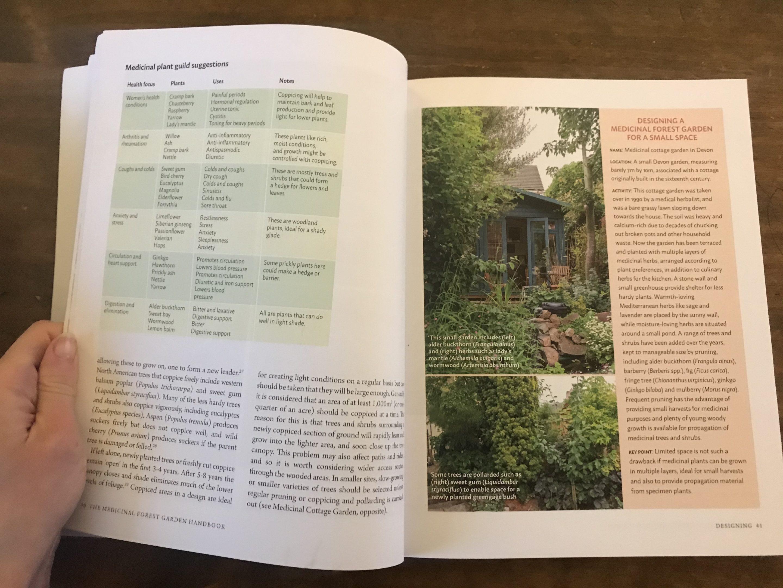 medicinal forest garden handbook anne stobart review 3