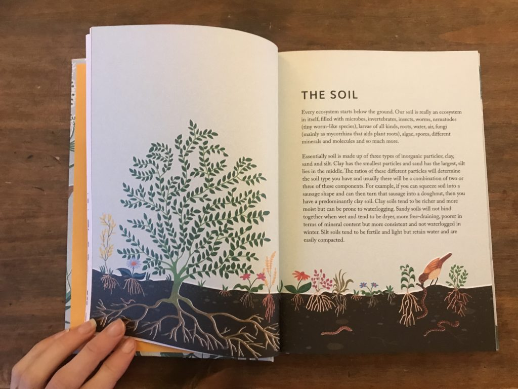 rewild your garden frances tophill book review 2
