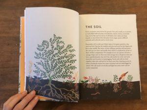 rewild your garden frances tophill book review 2