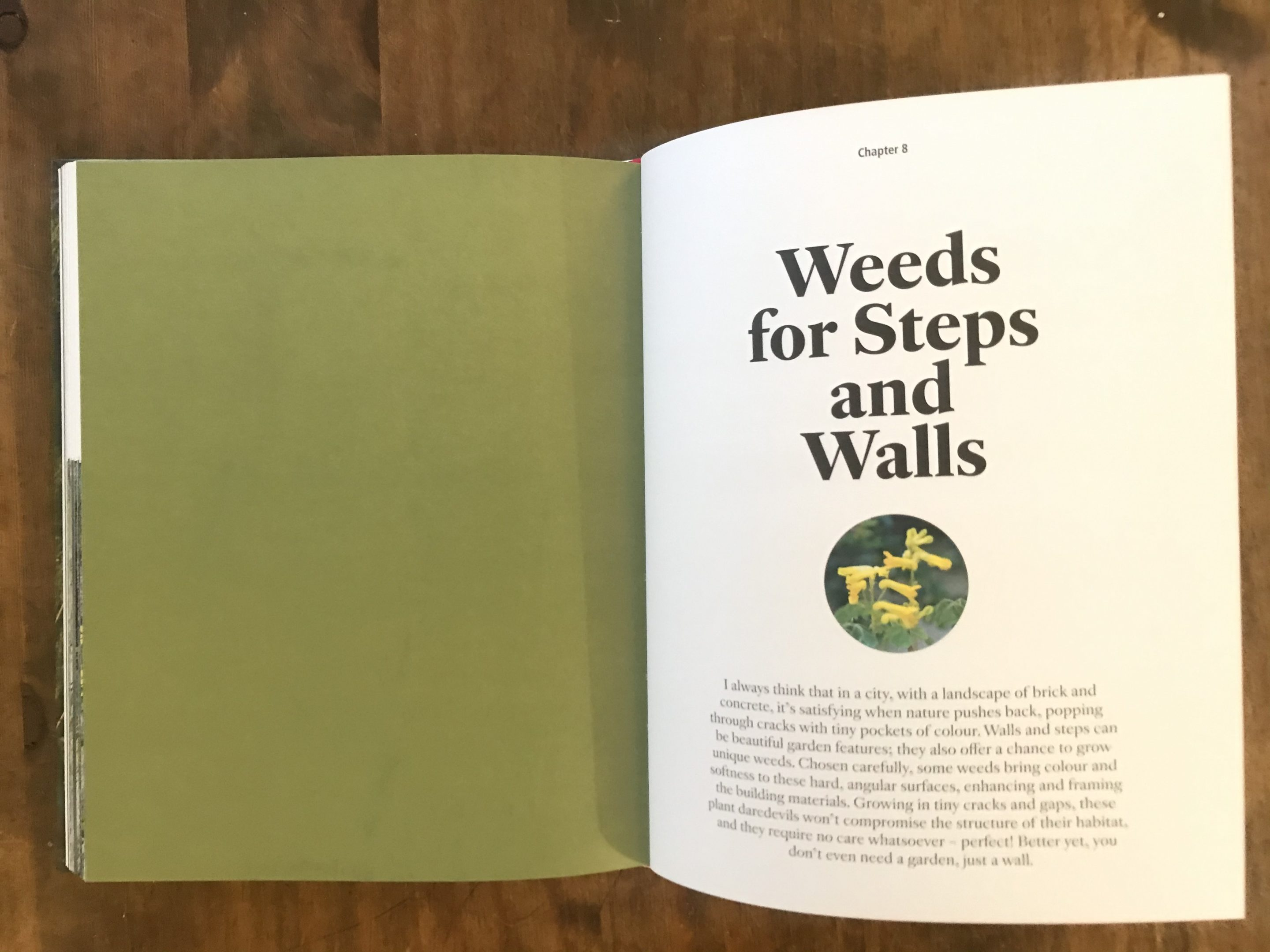 wild about weeds jack wallington review gardening books 3