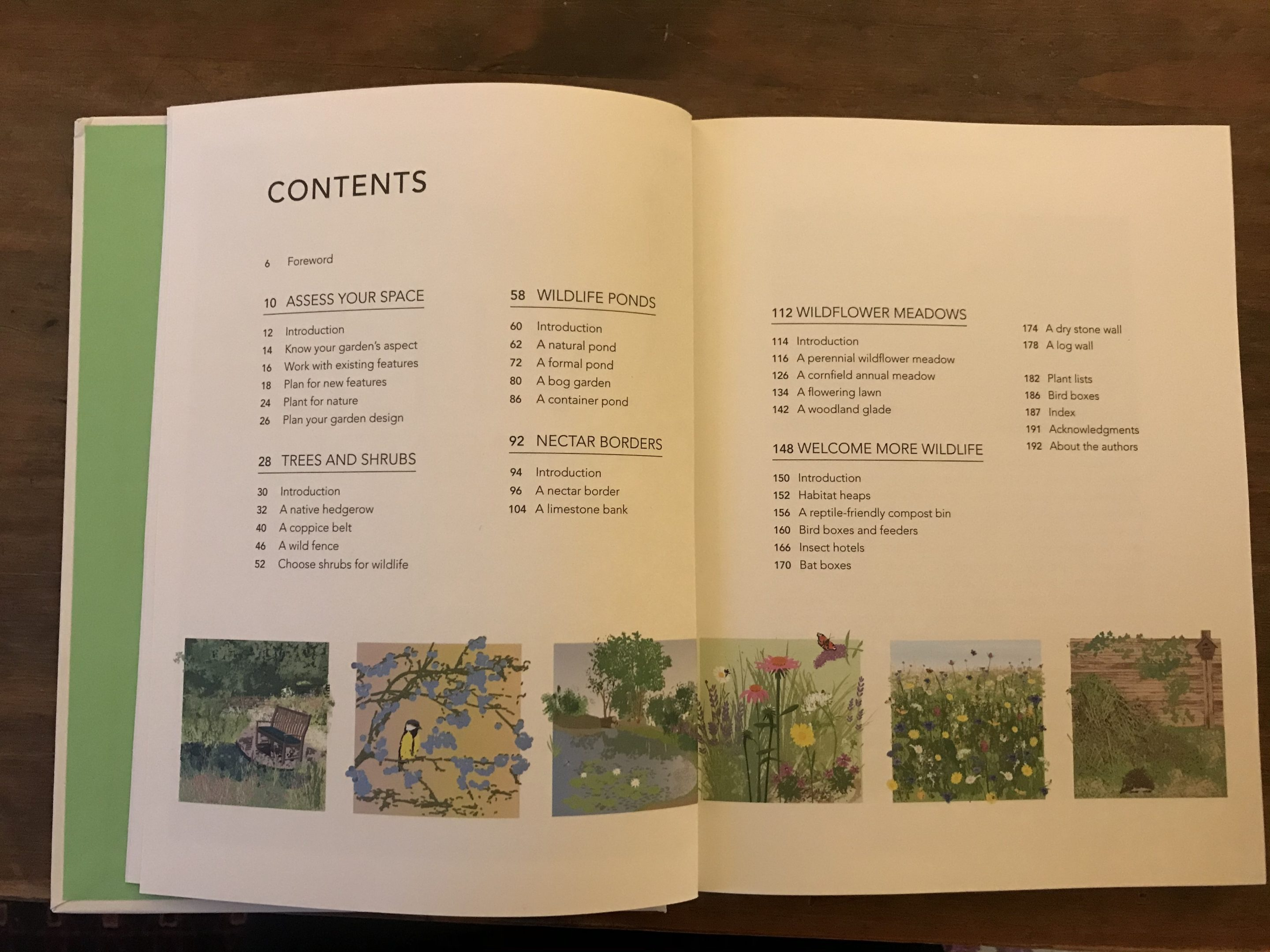 wild your garden butterfly brothers book review. 3