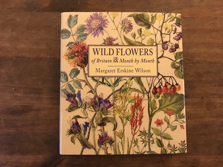 wildflowers margaret erskine wilson review
